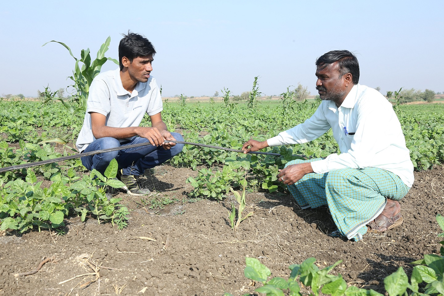 Ramthal-India- Community Irrigation Project 15.JPG